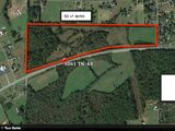 DEVELOPMENT LAND IN MADISONVILLE - 53+/- AC