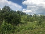 3 acres with Interstate Visibility in Lenoir City