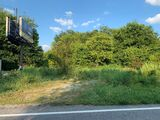 Vacant Land with Fairway/Regan Billboard